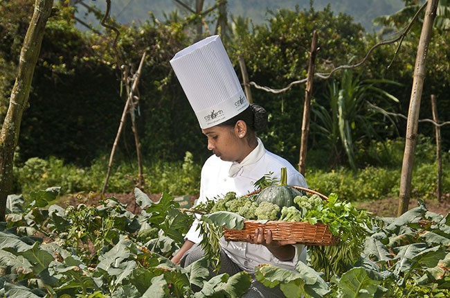 04-SpiceVillage-Organic-Farm-03-05e7dae800