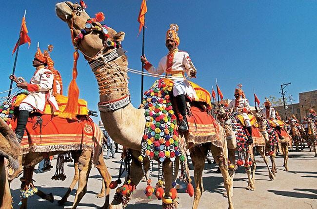 05-Camels-at-Desert-Festival-3634facf7f