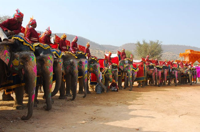 03-elephant-polo-at-dera-amer-002-f0e26fbb3e