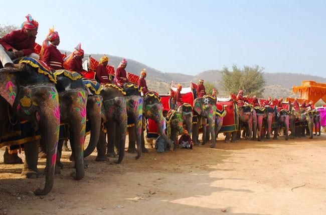 04-elephant-polo-at-dera-amer-002-43f62b2b0f